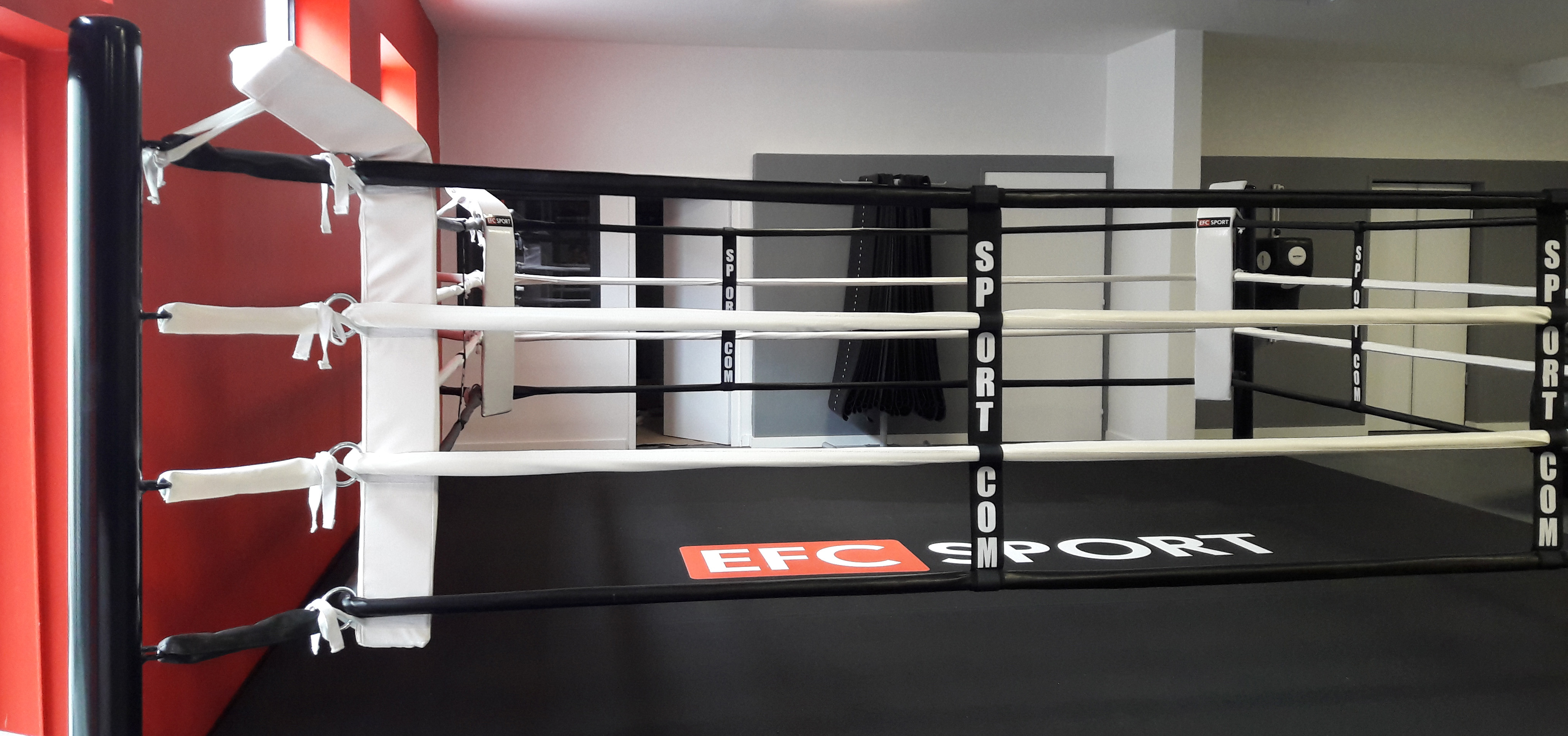 coaching sportif salle de sport pr parateur physique boxe. Black Bedroom Furniture Sets. Home Design Ideas